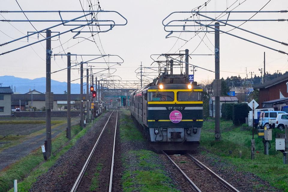 DSC_7603